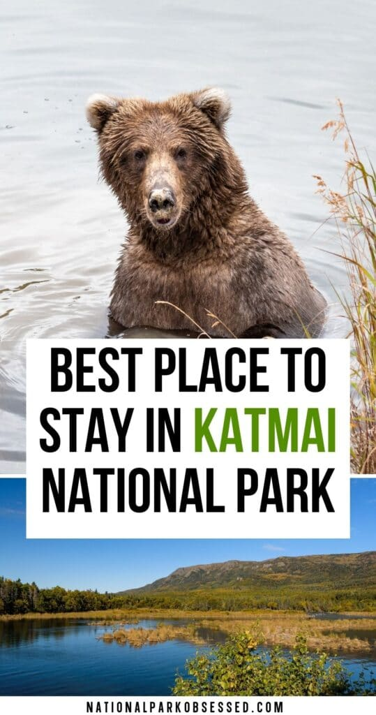 The Complete Guide to Brooks Lodge in Katmai National Park