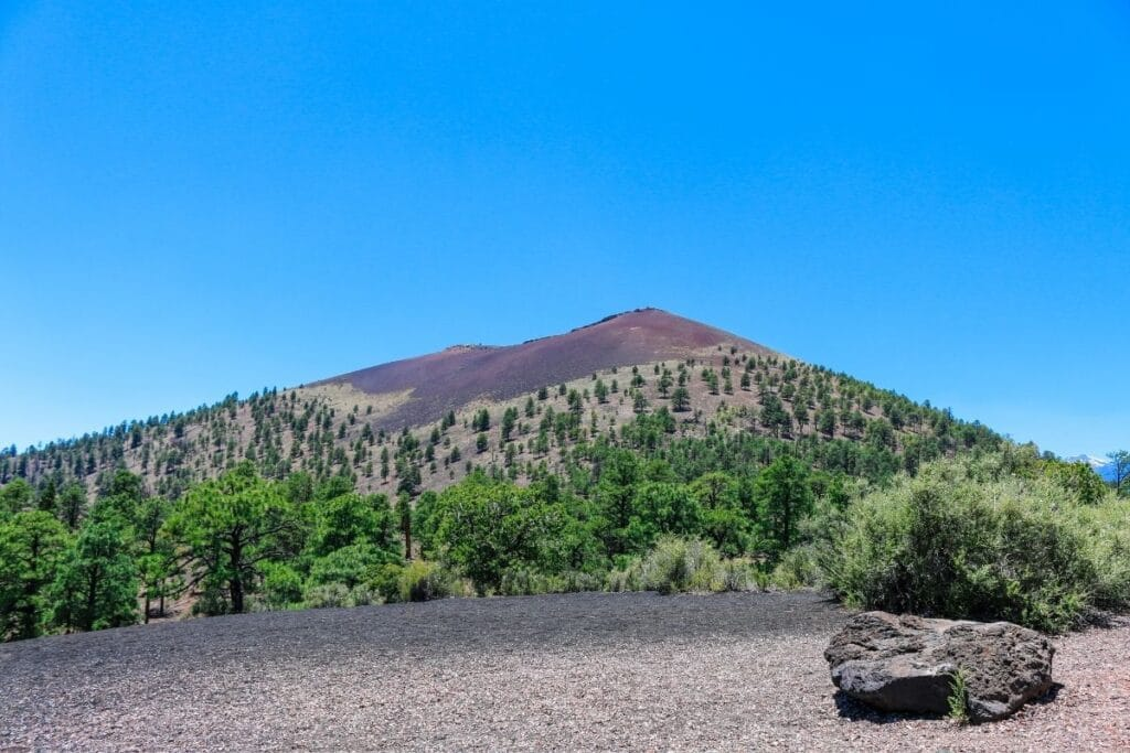 A cone volcano with sparse trees on it.