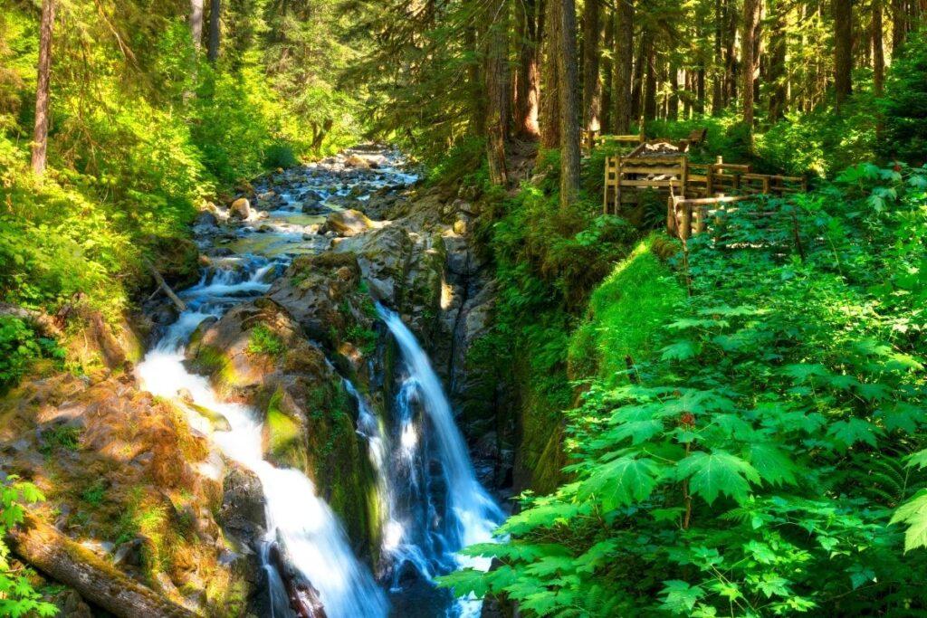 A waterfall in a lush green rainforest
