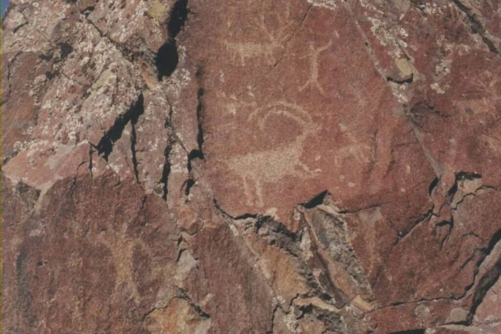 petroglyphs of a goat and humans located on the side of a cliff.