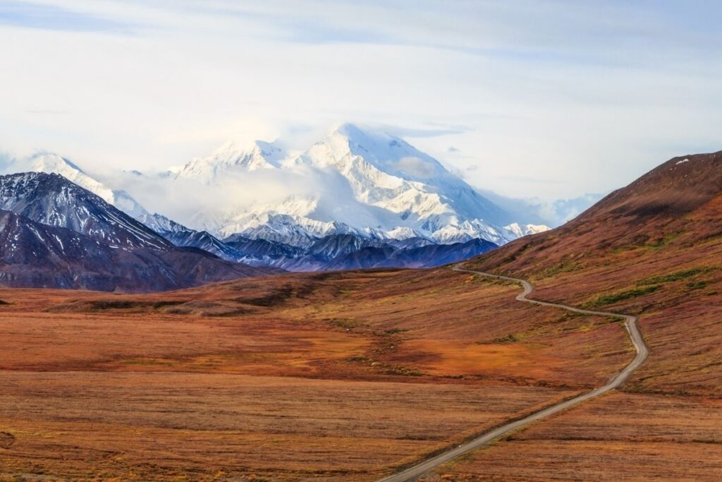 The Denali Park road leads into the park with the mountain in the background.
