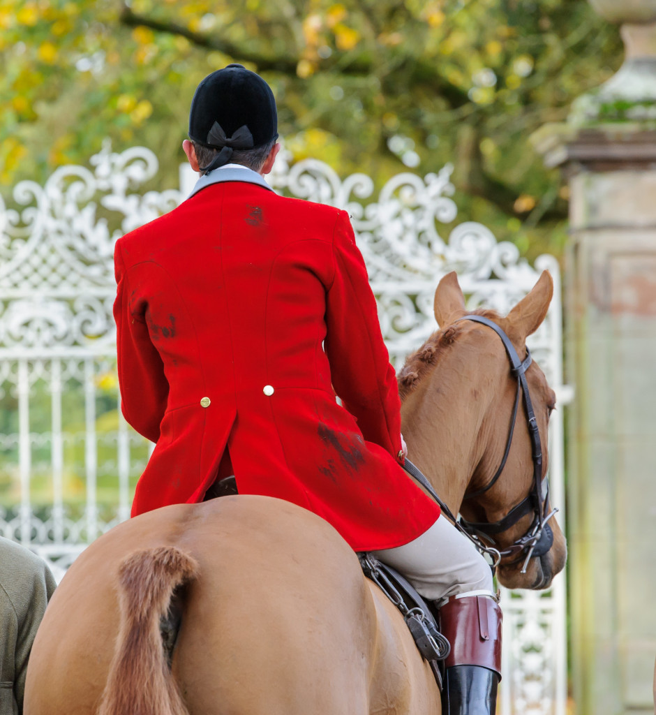The Cheshire Forest Hunt side saddle meet at Peover Hall, Knutsford, on Saturday 14th November 2015.