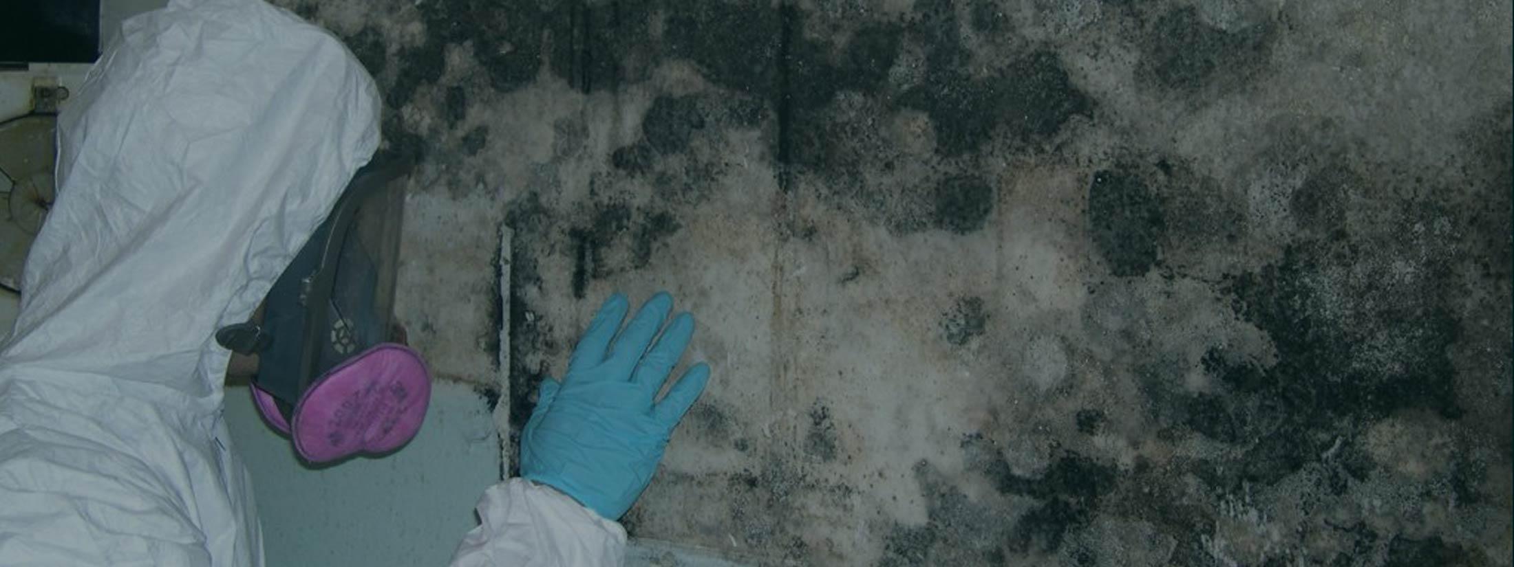 water damage restoration manhattan mold solutions