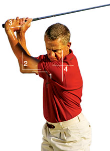 elbow in golf swing