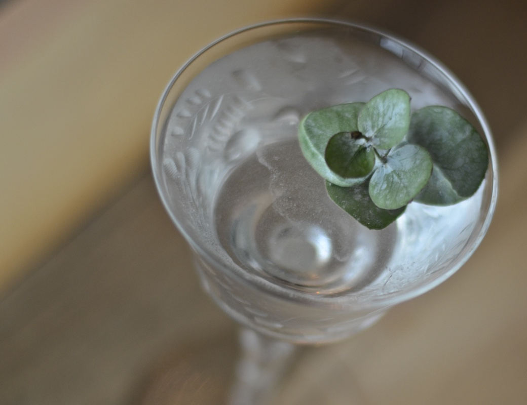 eucalyptus_cocktail