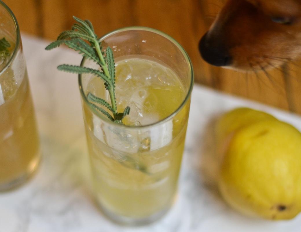 lavender liqueur lemon seltzer cocktail