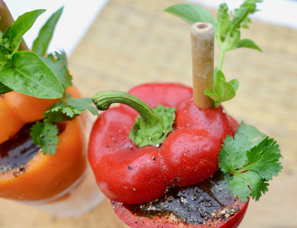 creative bloody mary in bell pepper