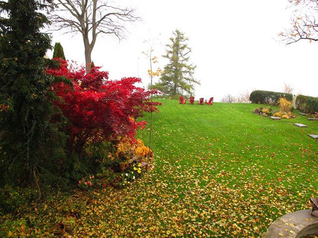 fall-office-view