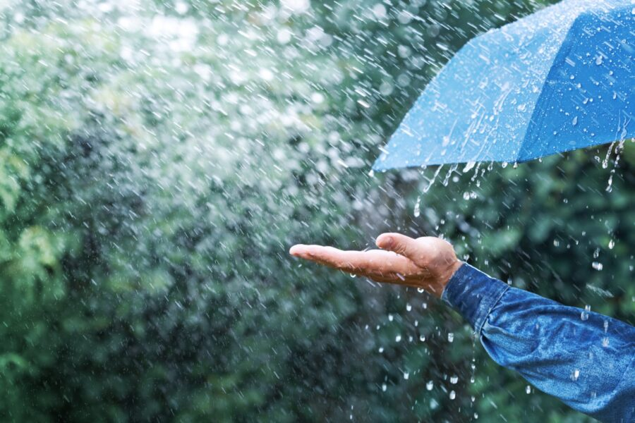 Hurricane Season and Allergies
