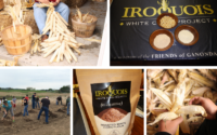 Iroquois White Corn - Foodie Travel USA