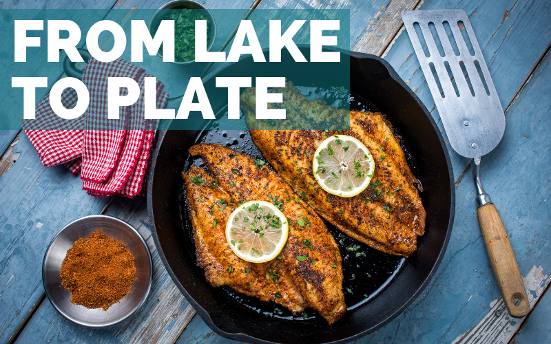 From Lake to Plate - Foodie Travel USA