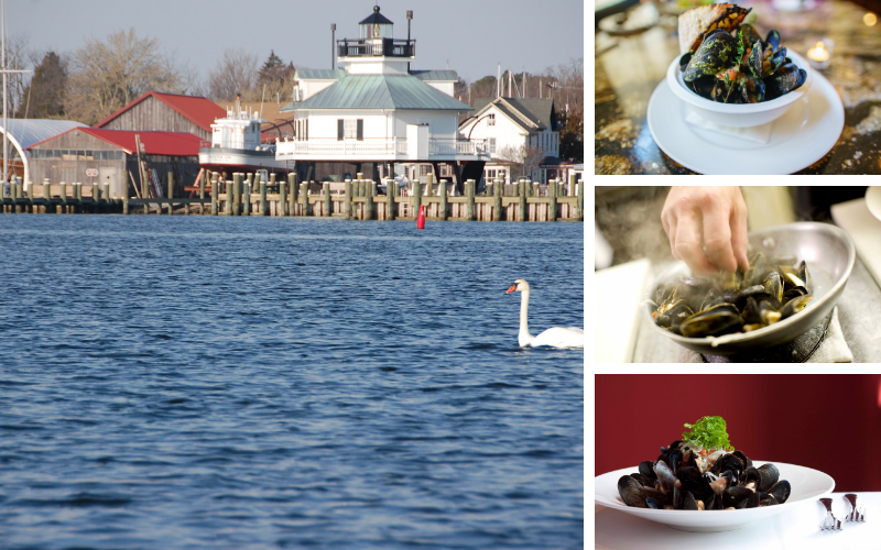 Talbot County Maryland - Foodie Travel USA