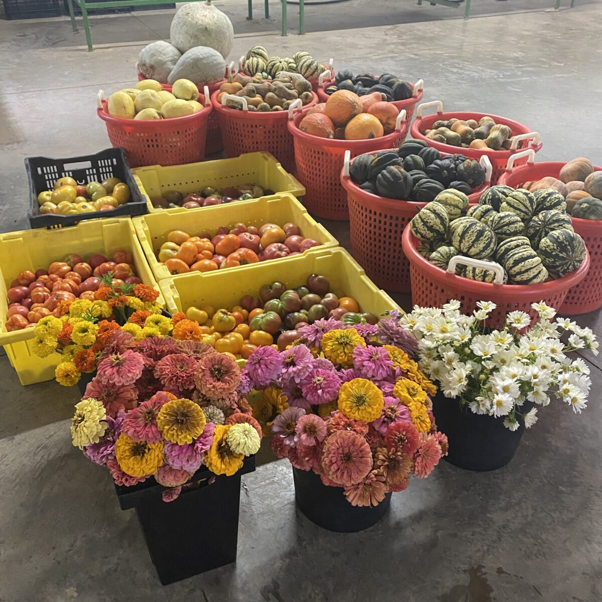 Flowers and Vegetables - Foodie Travel USA