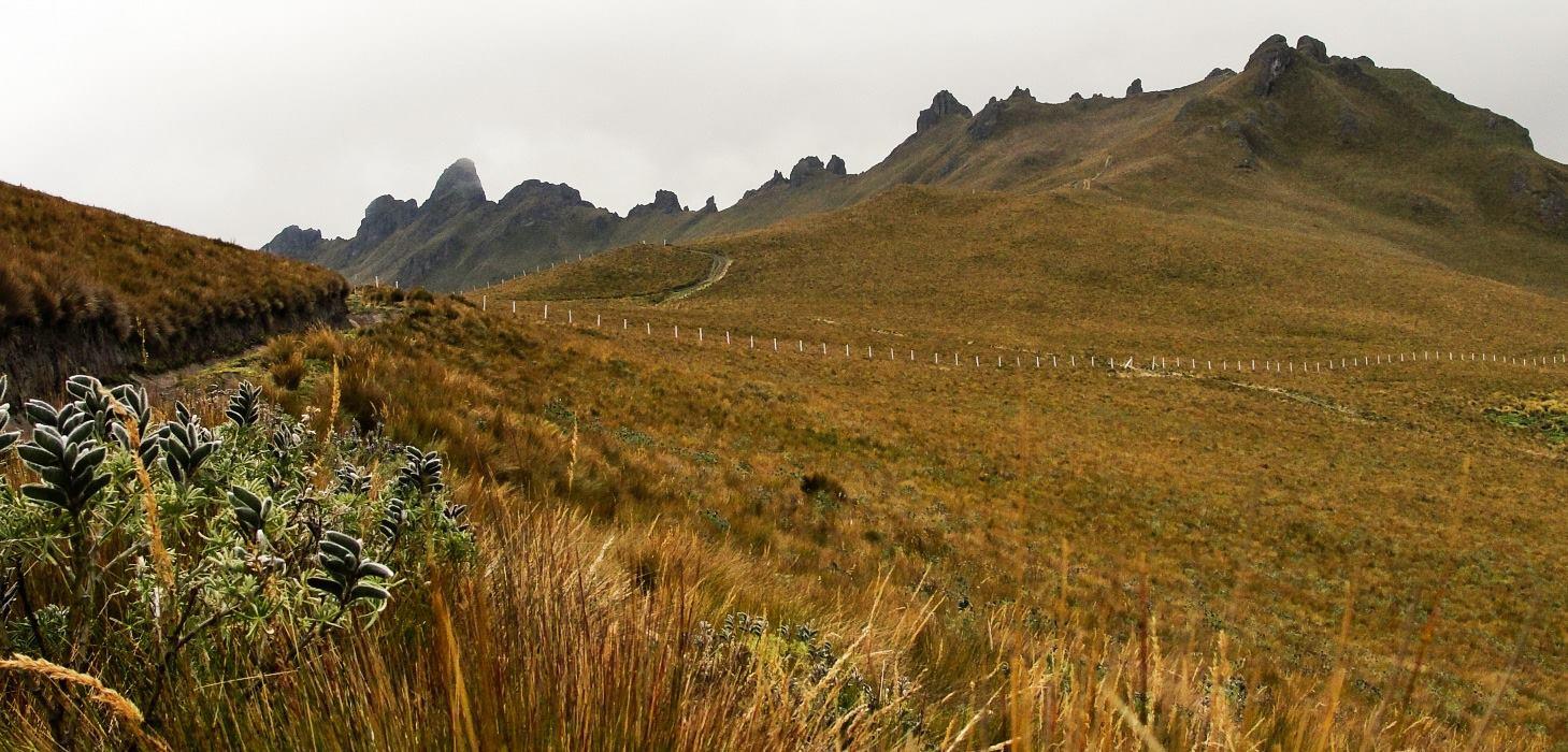 Cerro Puntas, Ecuador
