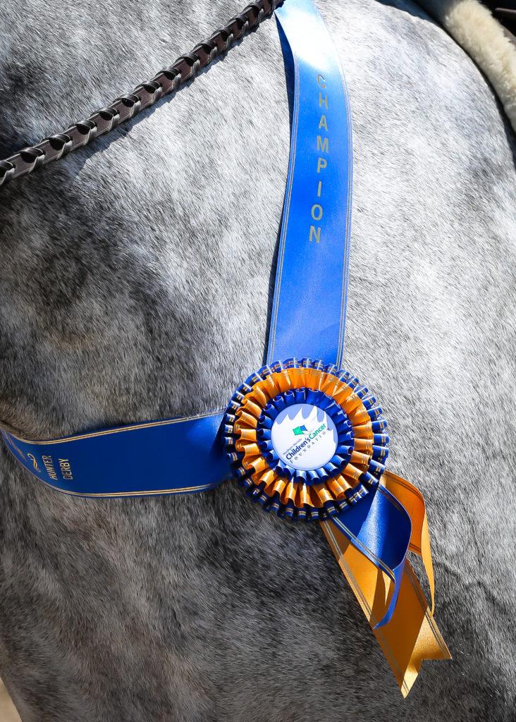 Create Memories by Anett- Equine Photographer http://www.creatememoriesbyanett.com