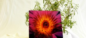 Custom Laminated Glass Flower