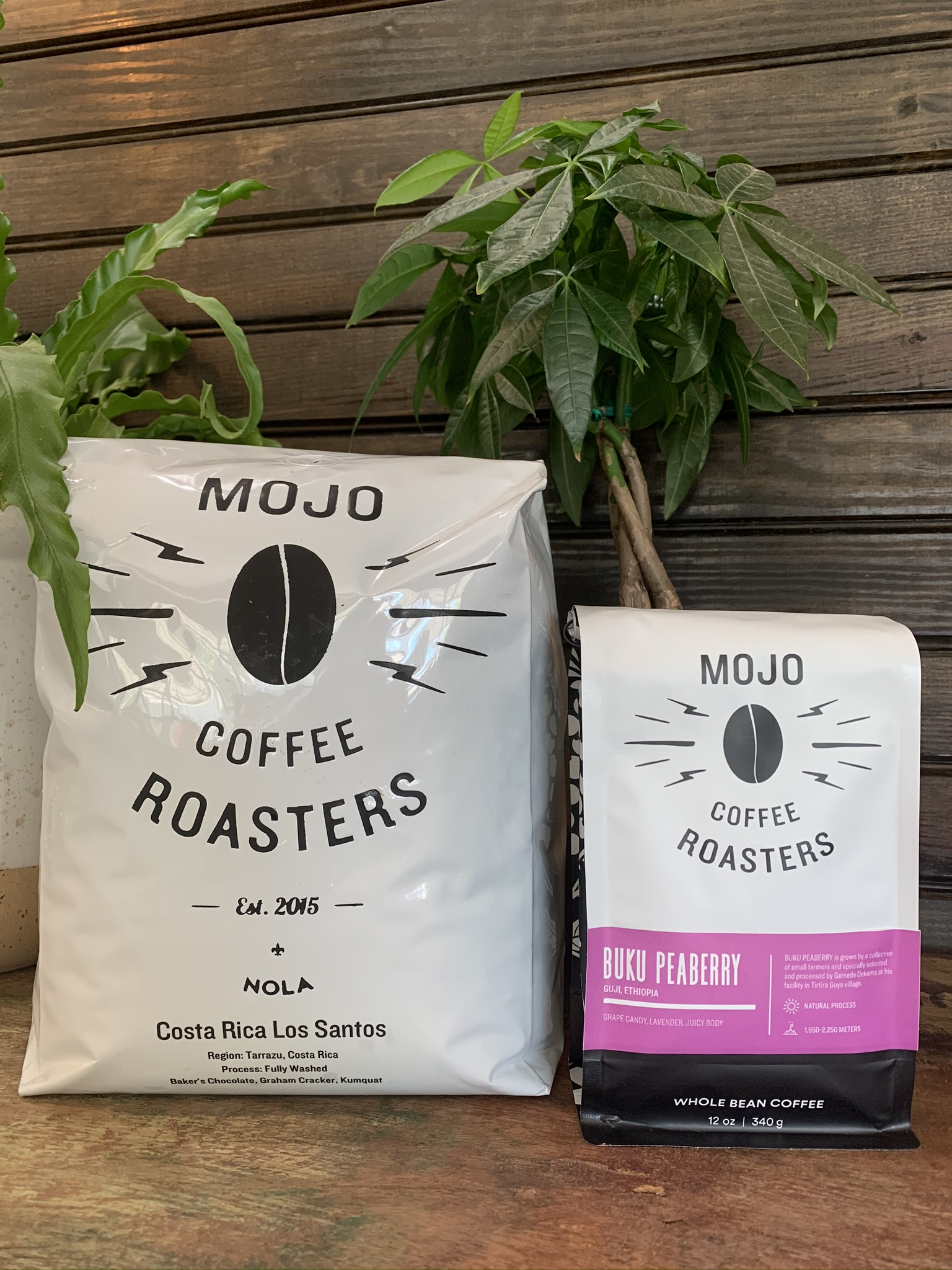 Retail coffee from Mojo Coffee Roasters available for purchase at Old Road Coffee