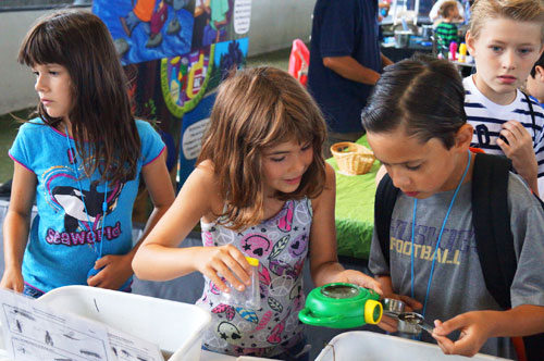 Our featured program Rodney Goes Green is an award winning school-based youth environmental science education program. Each component of this program is designed to coincide with today's current Next Gen and WA State Science Standards.