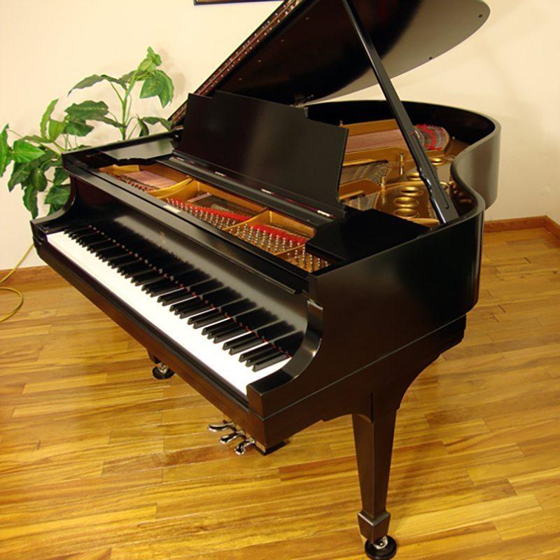 1925 Steinway M Grand Piano Ebony Traditional Style Restored