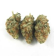 Buy Blue Hawaiian Marijuana