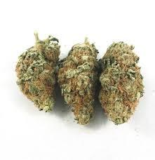 Buy Blue Hawaiian Marijuana
