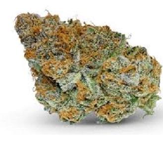 Buy Holy Grail cannabis