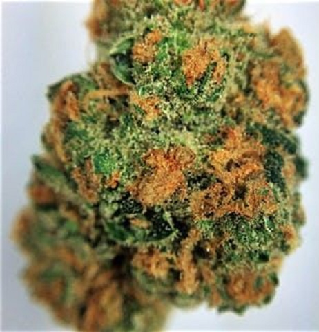 Buy AK-47 Cannabis online
