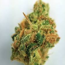 Buy Golden Goat Kush