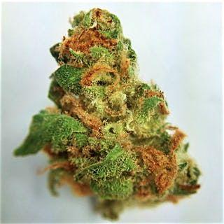 Order Romulan Marijuana Online