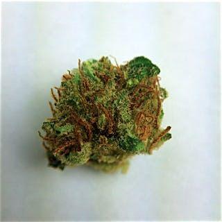 Order Platinum OG Marijuana