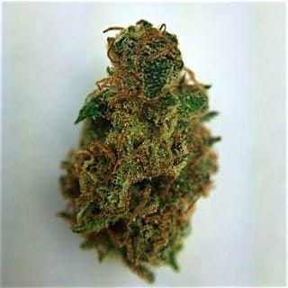 Order Yumboldt Marijuana Online