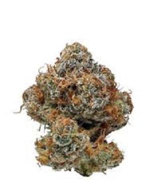 Buy Buddha Haze Marijuana