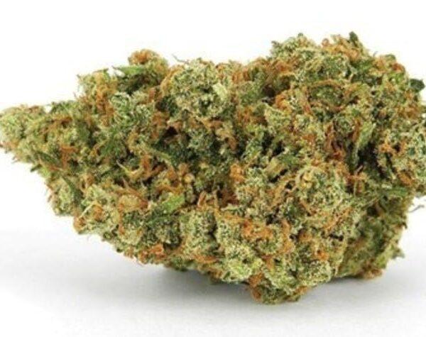 Buy Holywood OG weed