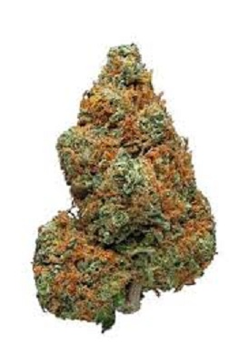 Buy Jamaican Dream Marijuana