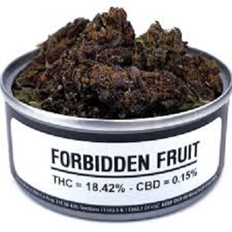 Buy FORBİDDEN FRUİT weed cans