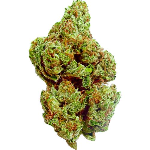 Buy Nordle marijuana online
