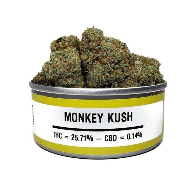 Buy monkey kush online