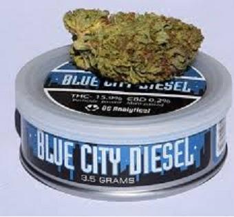 Buy blue city diesel