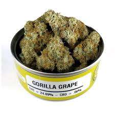 Buy gorilla grape strain