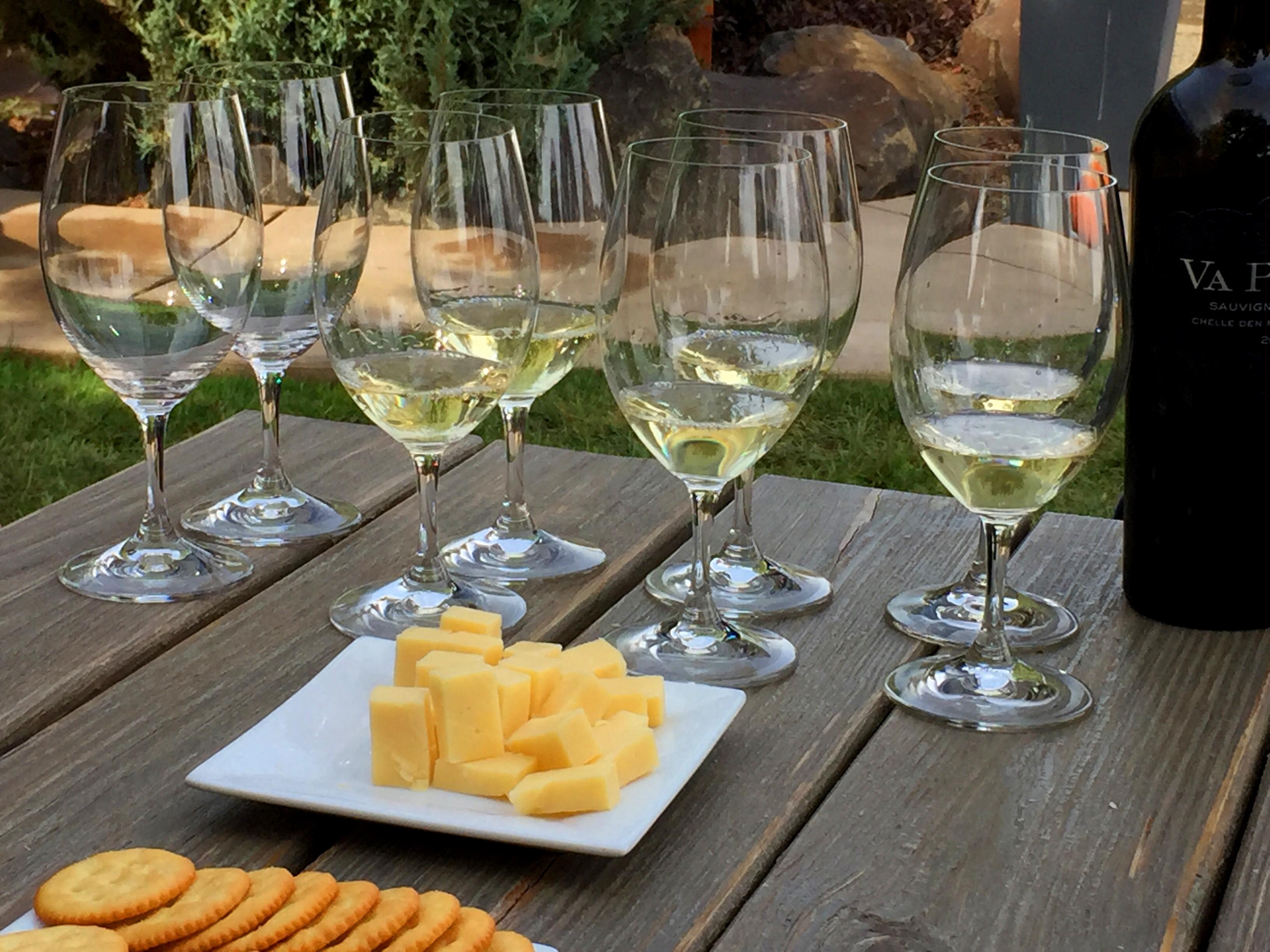 Wine Tasting Winery