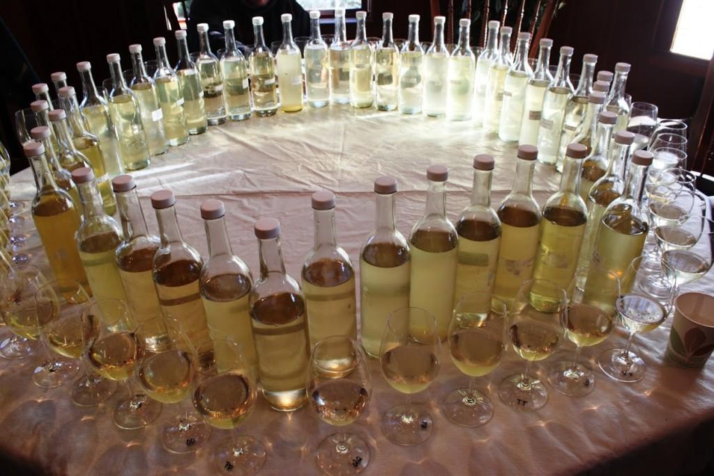 Champagne Sparkling Wine Primer