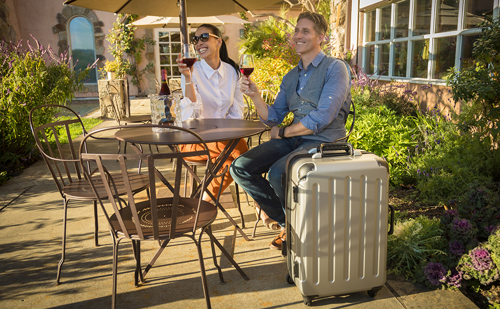 VinGardeValise Silver wine luggage