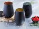Noir Stemless Wine Glasses