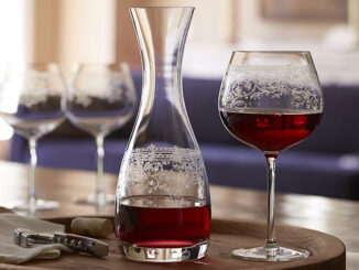 Lucca Burgundy Etched Glasses