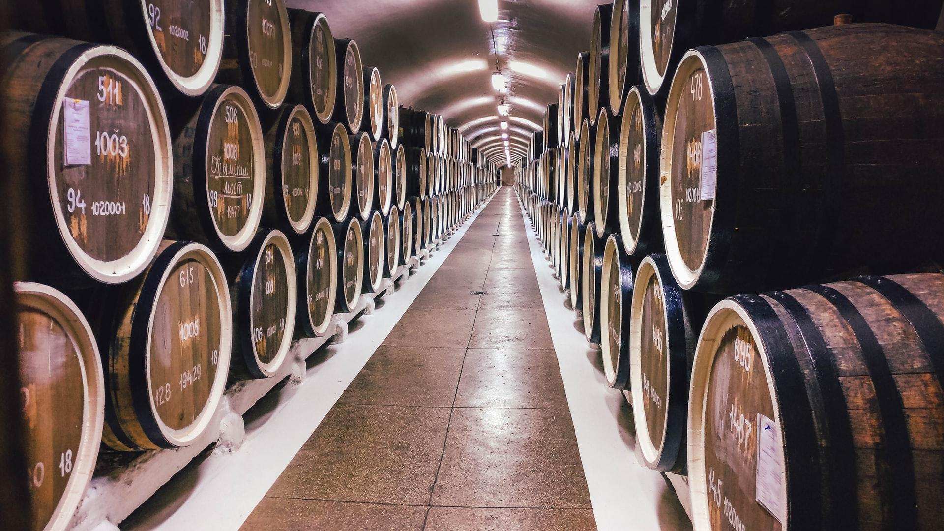 Ljubljana wine travel wine cellar