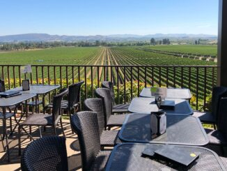 Patio at Gloria Ferrer Winery