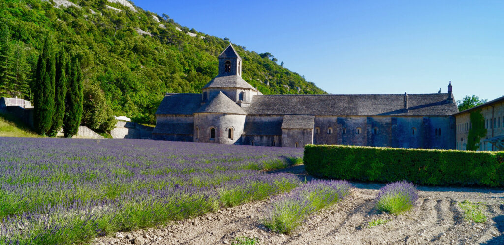 Provence France Lavender Fields