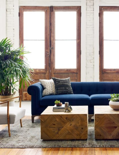 griffon sofa room scene