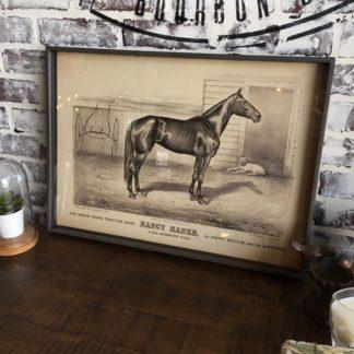 Famous Race Horse Framed Print- Nancy Hanks