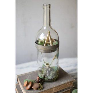 Wine Bottle Terrarium